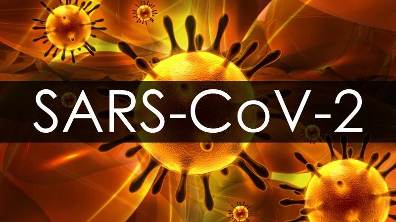 Sars-CoV2